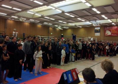 ibv deutsche meisterschaft kickboxen soest 2013 (4)