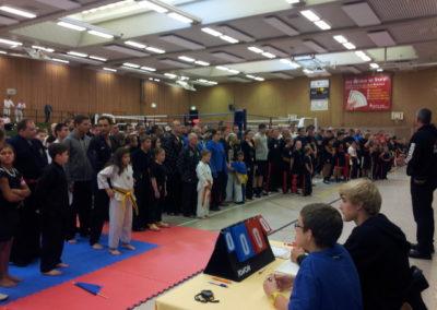ibv deutsche meisterschaft kickboxen soest 2013 (5)