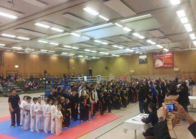 ibv deutsche meisterschaft kickboxen soest 2014 (7)