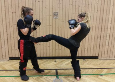 kickboxtraining soest februar 2016 (24)
